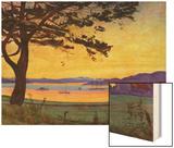 View of Helgeroa Wood Print by Harald Oscar Sohlberg