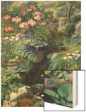 Alpine Flowers by a Stream Prints by Ottesen Otto Didrik