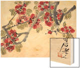 Apricot Blossoms Wood Print by Baishi Qi