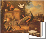 Peacocks and Other Birds by a Lake Prints by Melchior de Hondecoeter