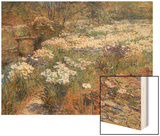 Water Garden Wood Print by Childe Hassam