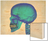 Human Skull Wood Print by Matthias Kulka