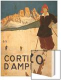 Cortina d'Ampezzo poster Wood Print