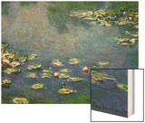 Water Lilies, 1906 Wood Print by Monet Claude
