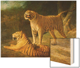 A Tiger and Tigress at the Exeter 'Change Menagerie in 1808, 1808 Wood Print by Jacques-Laurent Agasse
