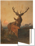 A Stag with Deer in a Wooded Landscape at Sunset Wood Print by Carl Friedrich Deiker