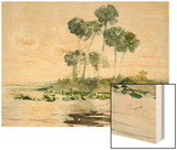 St. Johns River, Florida, 1890 Wood Print by Homer Winslow