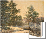A Fine Winter's Day Wood Print by Pieter Gerardus van Os
