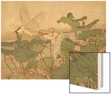 Egrets and Lotus Wood Print by Imao Keinen