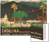 Catalina Island Travel Poster Wood Print