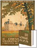 Cheverny les Chateaux de la Loire Wood Print by Constant Duval