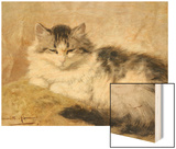 A Cat, 1893 Wood Print by Henriette Ronner-Knip