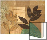 Leaf Kaleidescope 1 Wood Print by Matina Theodosiou