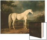 White Horse in a Wooded Landscape Wood Print by Sawrey Gilpin