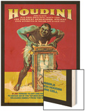 Houdini Wood Print