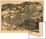 1893, Aspen Bird's Eye View, Colorado, United States Wood Print