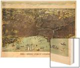 1893, Chicago Bird's Eye View, Illinois, United States Wood Print
