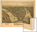 1902, Pittsburgh Bird's Eye View, Pennsylvania, United States Wood Print