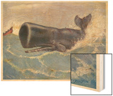 Sperm Whale Physeter Macrocephalus Wood Print by Louis A. Sargent