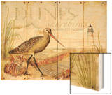 Dunes Shorebird Wood Print by Mary Escobedo