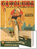 Bicycle Racing Promotion Poster