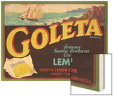 Goleta Lemon Crate Label Wood Print