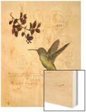 Filigree Hummingbird Prints by Chad Barrett