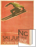 Ski Jumping Poster Wood Print