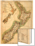 1895, New Zealand Poster