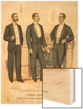 Three Variations of Evening Dress for 1893-4 Wood Print