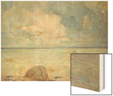 A View of the Sound Wood Print by Soren Emil Carlsen
