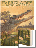 The Everglades National Park, Florida - Alligator Scene Wood Print by  Lantern Press