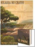 Kilauea Iki Crater, Hawaii Volcanoes National Park Wood Print by  Lantern Press