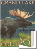 Grand Lake, Colorado - Moose at Night Wood Print by  Lantern Press