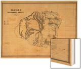 Hawaii - Panoramic Kauai Island Map Wood Print by  Lantern Press