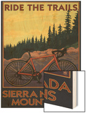 Sierra Nevada Mountains, California - Bicycle on Trails Wood Print by  Lantern Press