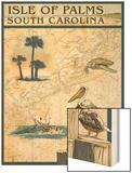 Isle of Palms, South Carolina - Nautical Chart Prints