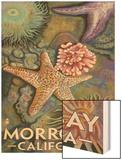 Morro Bay, CA - Tidepool Wood Print by  Lantern Press