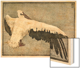 Pelican with Outspread Wings Wood Print by Walther Klemm