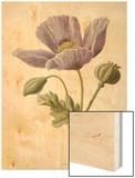 An Opium Poppy Wood Print by F. Edward Hulme