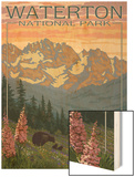 Waterton National Park, Canada - Bears and Spring Flowers Wood Print by  Lantern Press
