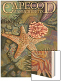 Cape Cod, Massachusetts - Tidepool Wood Print by  Lantern Press