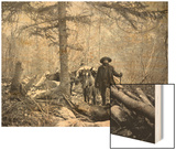 Gold Prospector Traveling For Supplies, Undated Print by Asahel Curtis