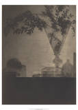 Glass and Shadows, 1912 Prints by Baron Adolf De Meyer