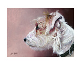 Parsons Terrier Giclee Print by Jane Booth