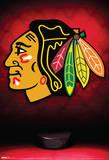 Chicago Blackhawks Logo Sports Poster Plakaty