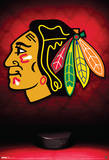 Chicago Blackhawks Logo Sports Poster Pôsters