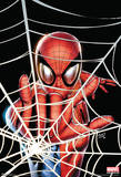 Spider-Man - Web Comics Poster Prints