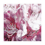 Froth and Flounce Giclee Print by Sarah Caswell