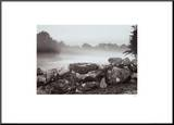 Morning Stone Wall Mounted Print by Mattias Nilsson